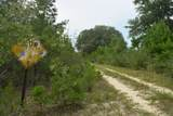 12.23 Acres On Hannah Branch Road - Photo 4