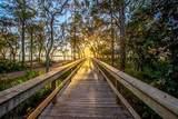 201 Canopy Cove - Photo 46