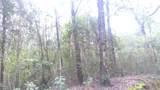 40 acres Jack Rd - Photo 1