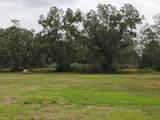 65 Acres Us Highway 331 - Photo 12