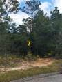 5 Acres Trammel Drive - Photo 4