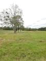 34 Acres Ludlum Road - Photo 1