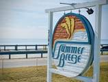 2384 Scenic Gulf Drive - Photo 2