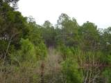 10 ACRES Mosley Rd - Photo 4