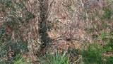 172 Seneca Trail - Photo 3