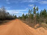 15+/- AC Munson Hwy - Photo 1