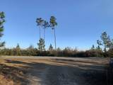 15+/- AC Munson Hwy - Photo 6