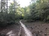 12 Acres Thrush Place - Photo 6