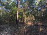 12 Acres Thrush Place - Photo 8