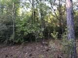 10.3 Acres Thrush Place - Photo 4