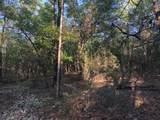 10.3 Acres Thrush Place - Photo 7