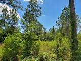 Lot 9 Bear Creek - Photo 7