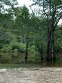 646 Berrian Lake Rd - Photo 3