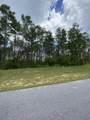 14719 Bream Pond Drive - Photo 9