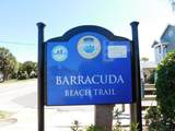 95 Barracuda Street - Photo 64
