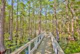 Lot 100 Cypress Walk - Photo 53