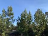 10+/- AC Peaden Hill Road - Photo 4