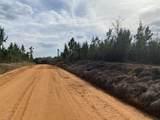 10+/- AC Peaden Hill Road - Photo 8