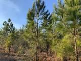 20+/- AC Peaden Hill Road - Photo 3
