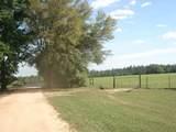 4929 Gilmore Road - Photo 27