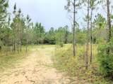 Lot 14 Gulf Pines Court - Photo 2