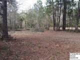197 Caswell Branch Road - Photo 4