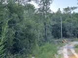 3.8+/- AC Cotton Creek Road - Photo 3