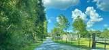 16 acres Stanley Drive - Photo 2