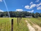 683 Pinewood Drive - Photo 44