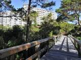550 Topsl Beach Boulevard - Photo 52