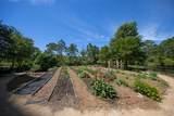 400 Kelly Plantation Drive - Photo 98
