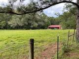 2972 Coon Bottom Rd Road - Photo 9