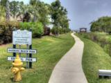 157 Shore Drive - Photo 34