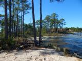 1339 Driftwood Point Road - Photo 24