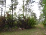 44 acres 4714 Co. Hwy 89 - Photo 3