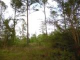 44 acres 4714 Co. Hwy 89 - Photo 4