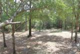 86 Hidden Lakes Trail - Photo 23