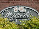Lot 48A Magnolia Lake Drive - Photo 1