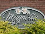 Lot 47A Magnolia Lake Drive - Photo 1