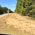13.49 ac. Spring Hill Road - Photo 2