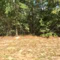 13.49 ac. Spring Hill Road - Photo 3