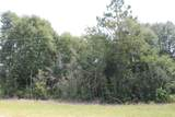 10.79 AC Wilkerson Bluff Road - Photo 3