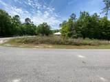 Lot 41 Bear Creek Boulevard - Photo 3