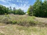 Lot 41 Bear Creek Boulevard - Photo 4