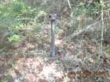 0000 Wolf Track Ridge - Photo 12