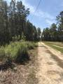 215 Weed Patch Drive - Photo 31