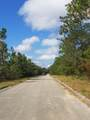 40 Acres Trammel Drive - Photo 1