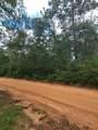 10 acres W. Suttles Road - Photo 12