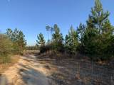 20 AC Munson Hwy - Photo 10