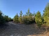 20 AC Munson Hwy - Photo 12